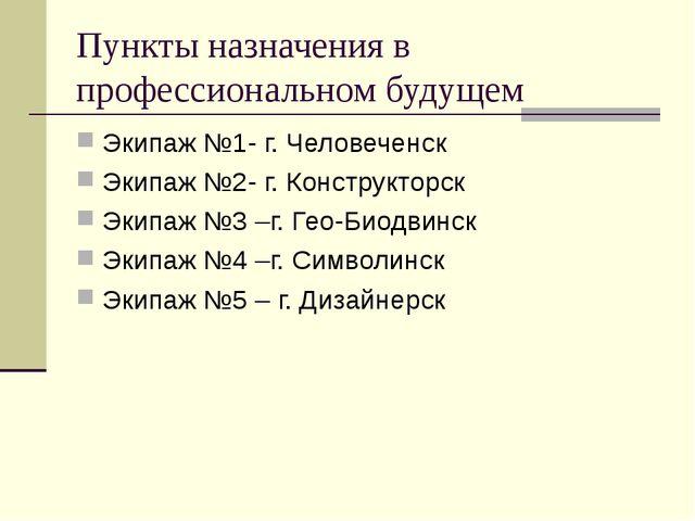 Пункты назначения в профессиональном будущем Экипаж №1- г. Человеченск Экипаж...