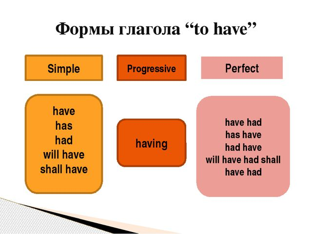 """Формы глагола """"to have"""" Simple Progressive Perfect have has had will have sh..."""