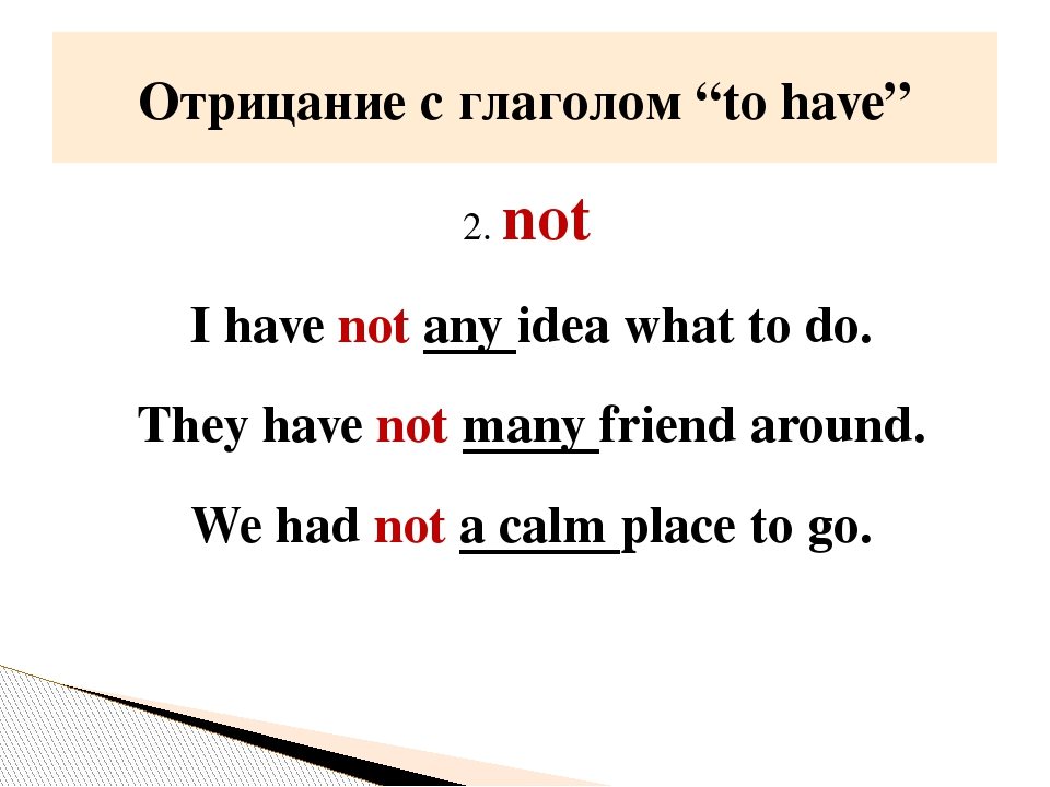 2. not I have not any idea what to do. They have not many friend around. We h...