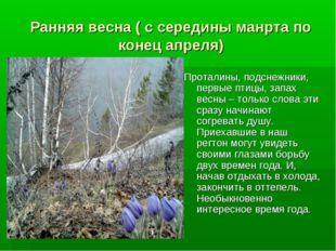 Ранняя весна ( с середины манрта по конец апреля) Проталины, подснежники, пер