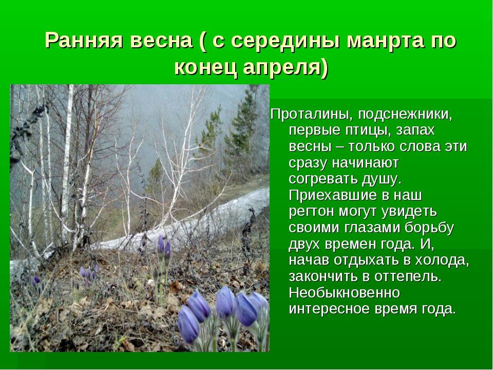 Ранняя весна ( с середины манрта по конец апреля) Проталины, подснежники, пер...