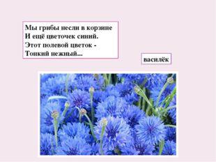 Мы грибы несли в корзине И ещё цветочек синий. Этот полевой цветок - Тонкий н