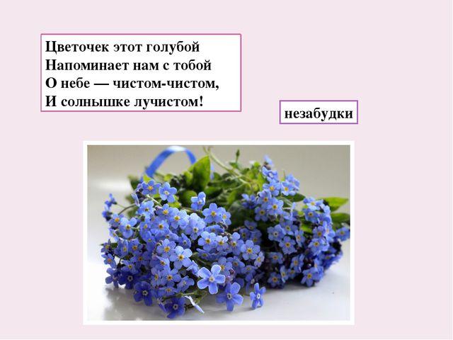 Цветочек этот голубой Напоминает нам с тобой О небе — чистом-чистом, И солныш...