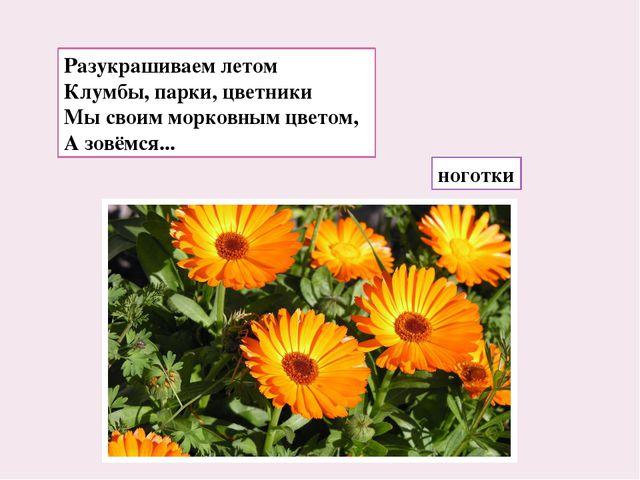 Разукрашиваем летом Клумбы, парки, цветники Мы своим морковным цветом, А зовё...