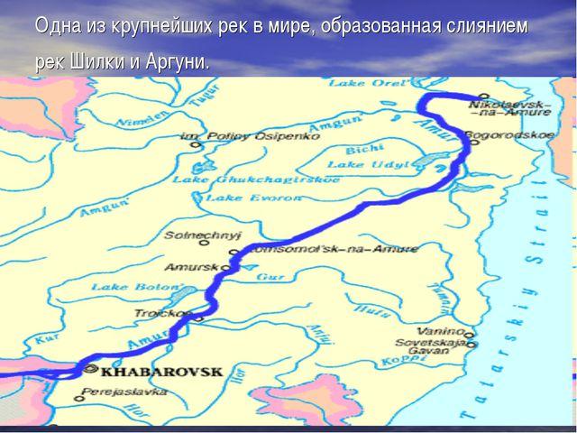 Одна из крупнейших рек в мире, образованная слиянием рек Шилки и Аргуни.