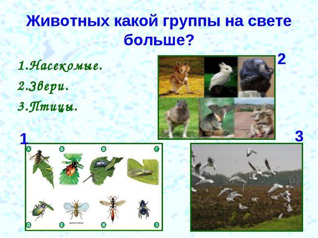 Животных какой группы на свете больше? 1.Насекомые. 2.Звери. 3.Птицы. 1 2 3