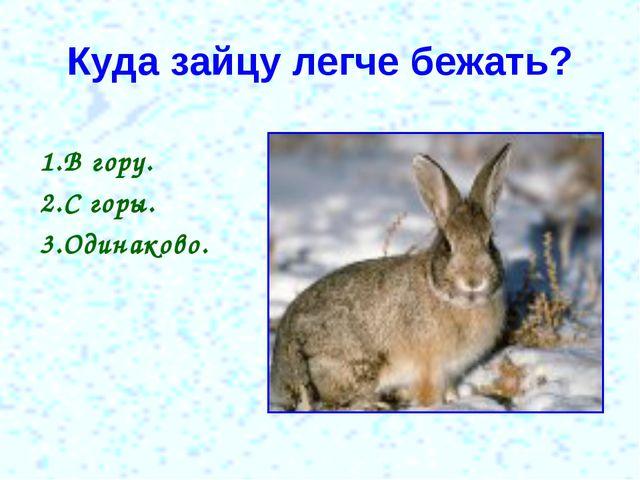 Куда зайцу легче бежать? 1.В гору. 2.С горы. 3.Одинаково.