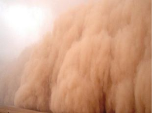 Наиболее важный источник пыли— почва.