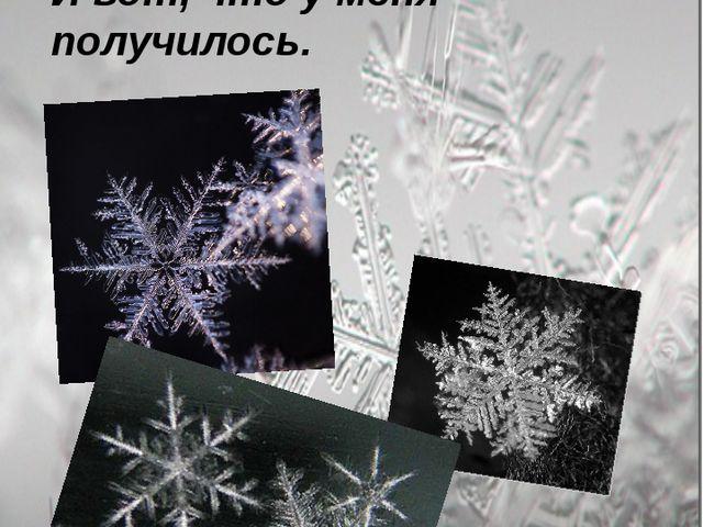 Я вооружилась микроскопом и пошла изучать строение снежинок при температуре...