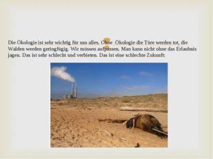Die Ökologie ist sehr wichtig für uns alles. Ohne Ökologie die Türe werden to