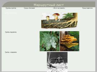 Маршрутный лист Группы грибов Среда обитания «Фото на память» Представители Г