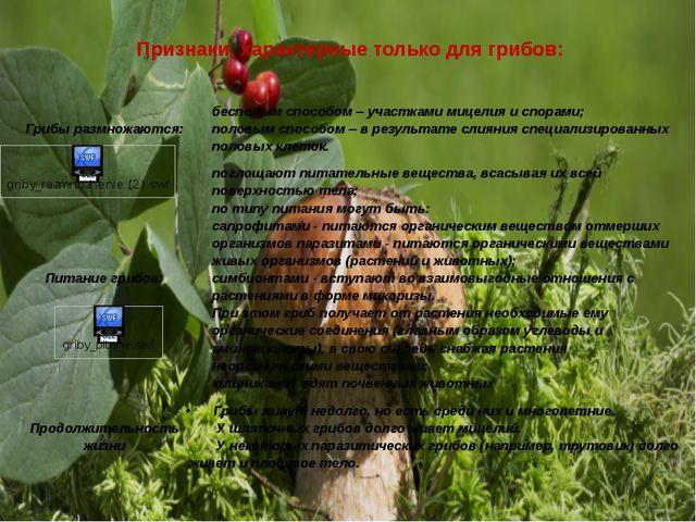 Признаки, характерные только для грибов: Грибы размножаются: бесполым способо...