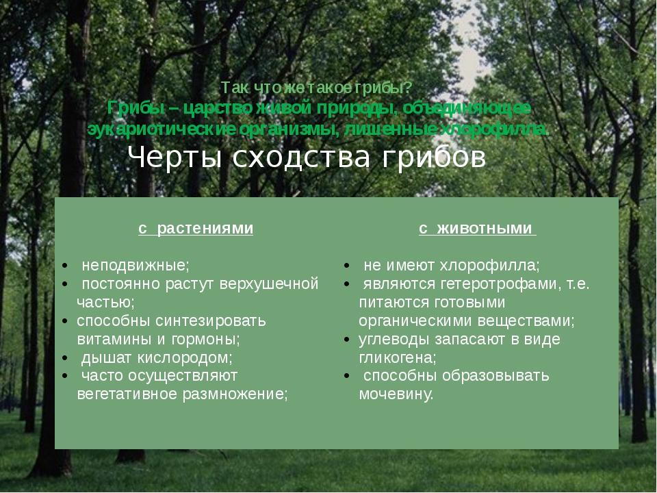 Так что же такое грибы? Грибы – царство живой природы, объединяющее эукариот...
