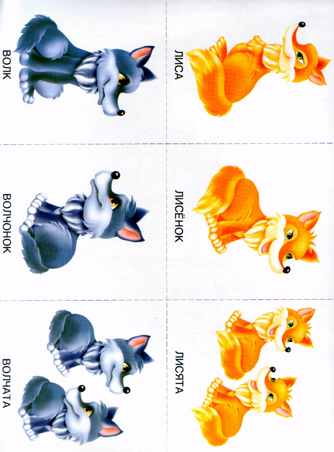 Животные и их детеныши картинки для доу просят