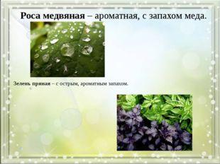 Зелень пряная – с острым, ароматным запахом. Роса медвяная – ароматная, с зап