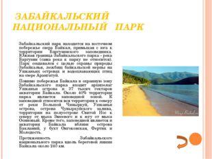 ЗАБАЙКАЛЬСКИЙ НАЦИОНАЛЬНЫЙ ПАРК Забайкальский парк находится на восточном п