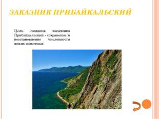 ЗАКАЗНИК ПРИБАЙКАЛЬСКИЙ Цель создания заказника Прибайкальский- сохранение