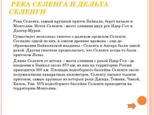 РЕКА СЕЛЕНГА И ДЕЛЬТА СЕЛЕНГИ Река Селенга, самый крупный приток Байкала, б