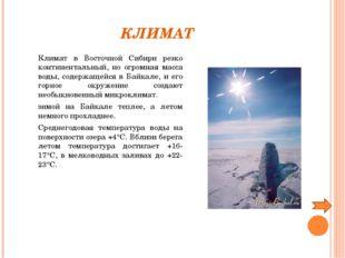 КЛИМАТ Климат в Восточной Сибири резко континентальный, но огромная масса в