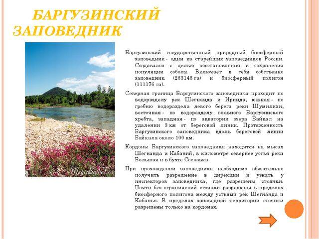 БАРГУЗИНСКИЙ ЗАПОВЕДНИК Баргузинский государственный природный биосферный за...