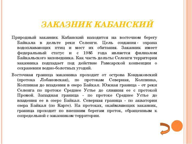 ЗАКАЗНИК КАБАНСКИЙ Природный заказник Кабанский находится на восточном берег...