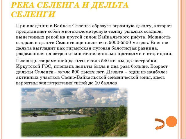 РЕКА СЕЛЕНГА И ДЕЛЬТА СЕЛЕНГИ При впадении в Байкал Селенга образует огромну...