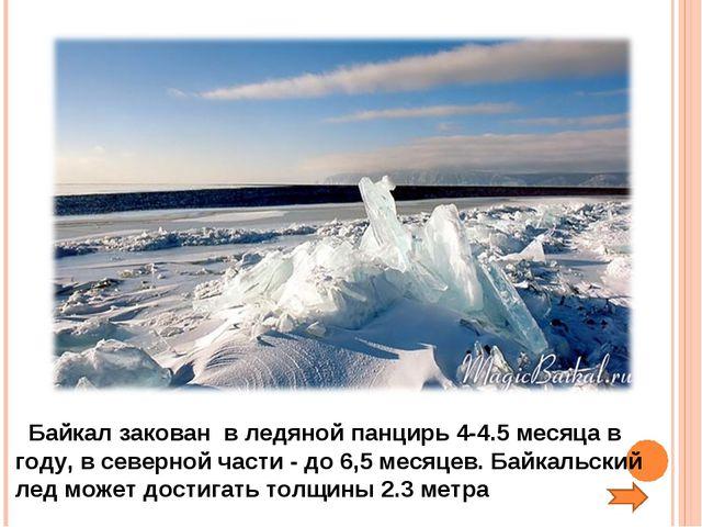Байкал закован в ледяной панцирь 4-4.5 месяца в году, в северной части - до...