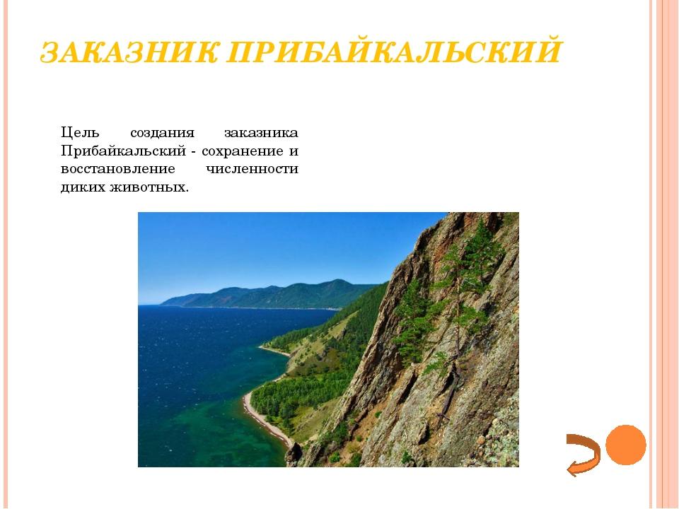 ЗАКАЗНИК ПРИБАЙКАЛЬСКИЙ Цель создания заказника Прибайкальский- сохранение...