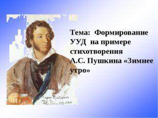 Тема: Формирование УУД на примере стихотворения А.С. Пушкина «Зимнее утро»