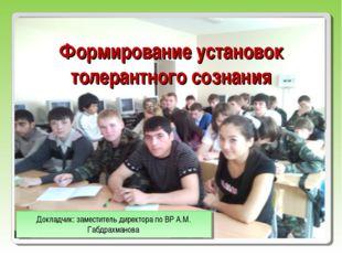 Формирование установок толерантного сознания Докладчик: заместитель директора