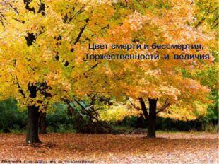 Цвет смерти и бессмертия, Торжественности и величия