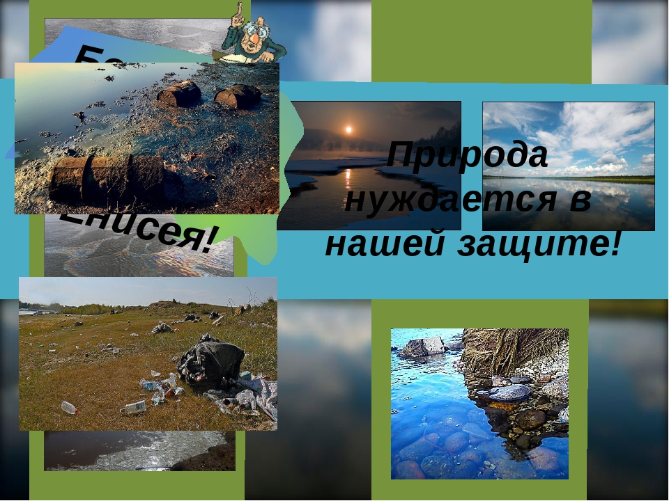 Берегите природу Енисея! Берегите природу Енисея! Природа нуждается в нашей...