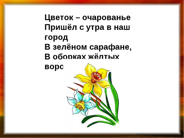 Цветок – очарованье Пришёл с утра в наш город В зелёном сарафане, В оборках ж...