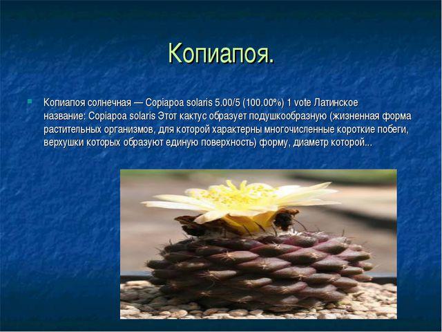 Копиапоя. Копиапоя солнечная — Copiapoa solaris 5.00/5 (100.00%) 1 vote Латин...