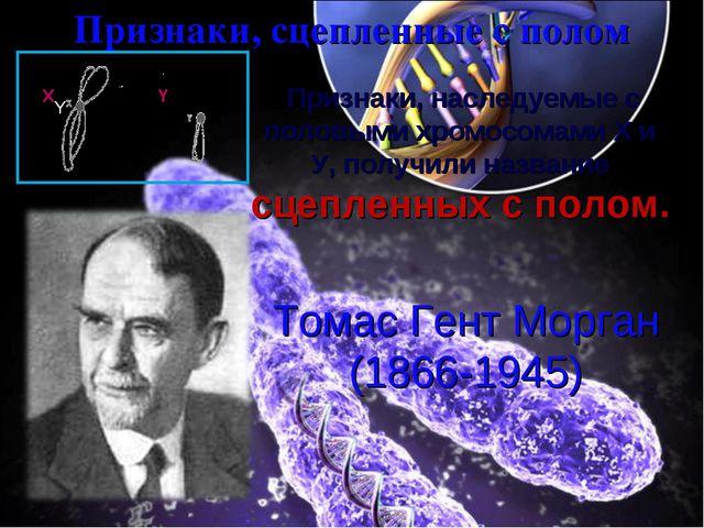 Признаки, сцепленные с полом  Признаки, наследуемые с половыми хромосомами X...