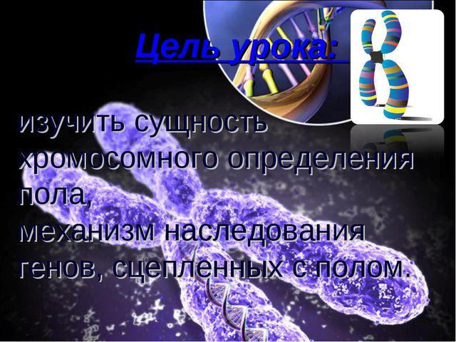 Цель урока: изучить сущность хромосомного определения пола, механизм наследо...