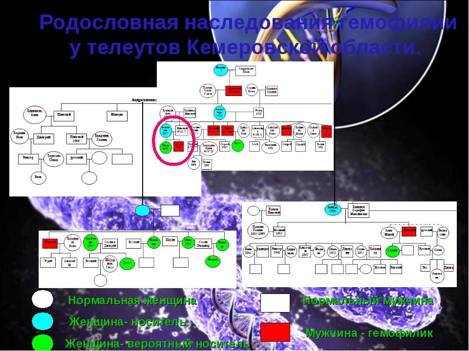 Родословная наследования гемофилии у телеутов Кемеровской области. Нормальна...