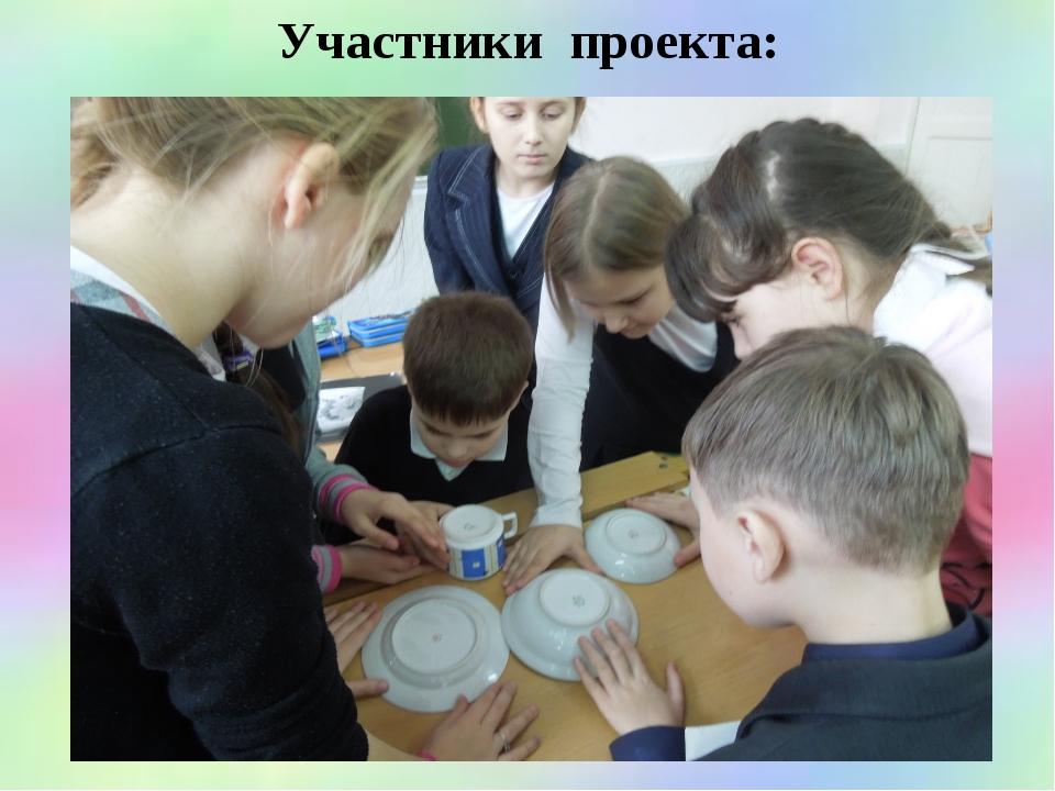 Участники проекта: