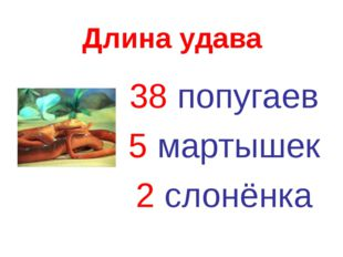 Длина удава 38 попугаев 5 мартышек 2 слонёнка