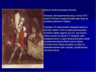 Дом на голове или мыши в волосах Франция, законодательница мод, в конце XVII