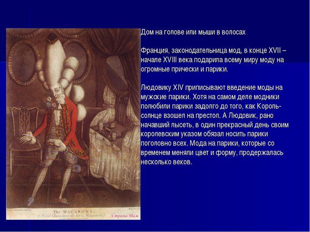 Дом на голове или мыши в волосах Франция, законодательница мод, в конце XVII...
