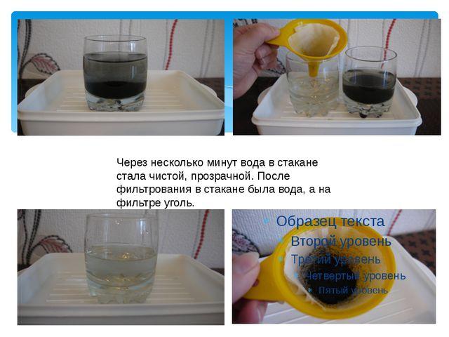 Через несколько минут вода в стакане стала чистой, прозрачной. После фильтров...