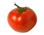 http://vneklassa.narod.ru/kartinki/kartinki_03_1/min_pomidor.gif