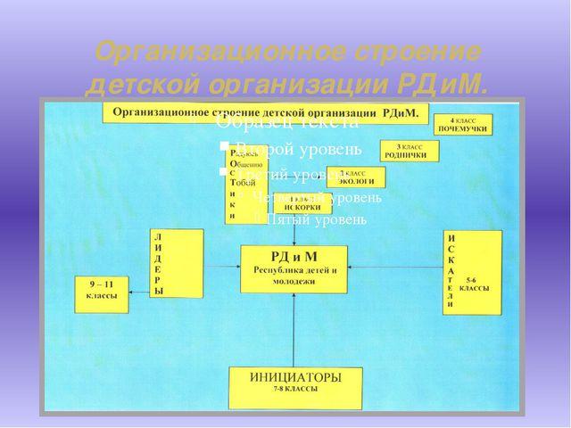 Организационное строение детской организации РДиМ.