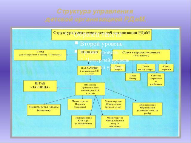 Структура управления детской организацией РДиМ.
