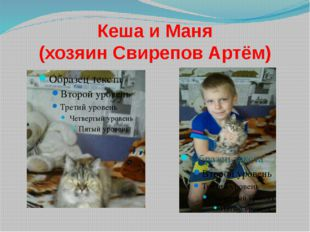 Кеша и Маня (хозяин Свирепов Артём)
