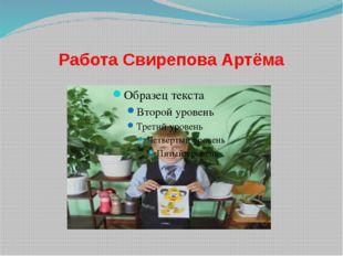 Работа Свирепова Артёма