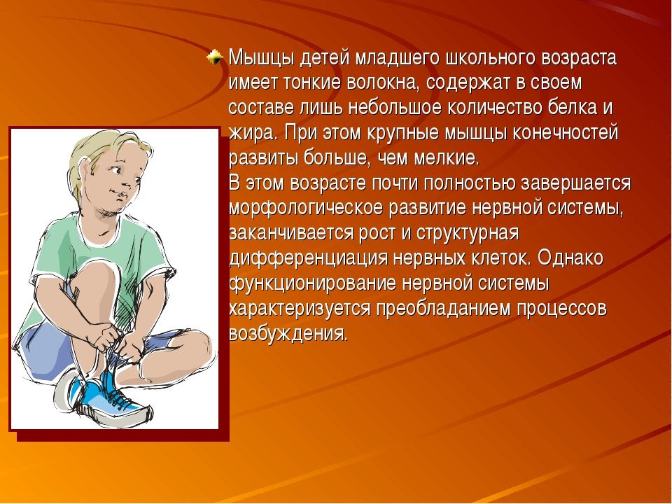 Мышцы детей младшего школьного возраста имеет тонкие волокна, содержат в свое...