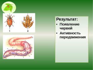 Результат: Появление червей Активность передвижения