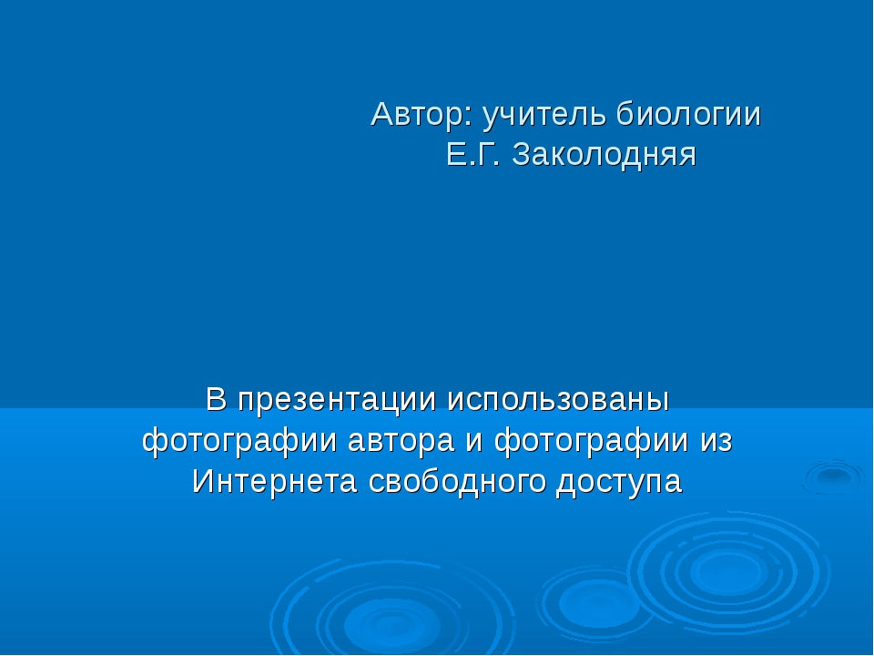 Автор: учитель биологии Е.Г. Заколодняя В презентации использованы фотографии...